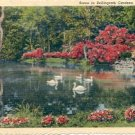 MIRROR LAKE WITH SWANS IN BELLINGRATH GARDENS MOBILE ALABAMA LINEN POSTCARD #209 UNUSED