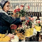 THE MARKET - OSLO - NORWAY COLOR PICTURE POSTCARD #258 UNUSED