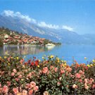 OBERRIED am BRIENZERSEE SWITZERLAND COLOR PICTURE POSTCARD #282 UNUSED