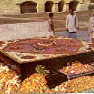 RAJ GHAT BURIAL OF MAHATMA GANDHI NEW DELHI INDIA COLOR PICTURE POSTCARD #428 UNUSED