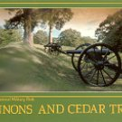 CANNONS & CEDAR TREES VICKSBURG NATIONAL MILITARY PARK COLOR PICTURE POSTCARD #491 UNUSED
