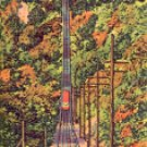 INCLINE RAILWAY UP LOOKOUT MT. TO ROCK CITY GARDENS TENNESSEE LINEN POSTCARD #522 UNUSED