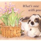WHAT'S NEW WITH YOU? (WITH RABBIT) ART COLOR POSTCARD #587 UNUSED