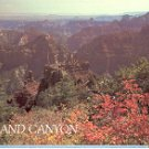 GRAND CANYON NATIONAL PARK FROM POINT IMPERIAL ARIZONA COLOR POSTCARD #589 UNUSED