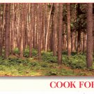 COOK FOREST STATE PARK COOKSBURG PENNSYLVANIA COLOR PICTURE POSTCARD #2 UNUSED MINT