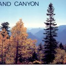 GRAND CANYON NORTH RIM - ARIZONA COLOR PICTURE POSTCARD #9 UNUSED MINT
