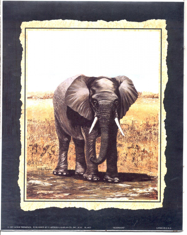 1997 PRINT #23: ELEPHANT 8 X 10 MINT