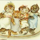 1-2-3-4 SKIPPING FOUR FEET FROM THE FLOOR - CAT COLOR POSTCARD # 18 UNUSED 1994 NEAR MINT