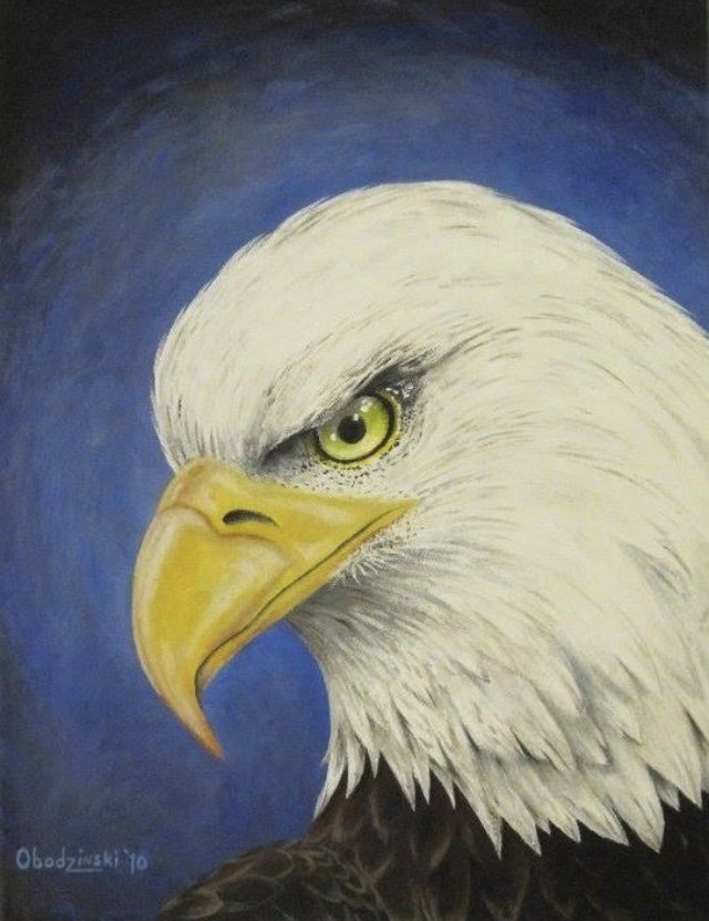 """""""Fearless"""" Eagle Art Poster Print"""
