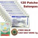 120 Patches Hisamitsu SALONPAS  + FREE GOLDEN STAR BALM