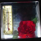 Lucite plastic thermometer red rose desk paperweight triangle