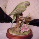 Parakeet w/ base - Andrea by Sadek