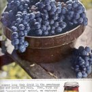 1959   Kraft Pure Grape Jelly  ad (# 4463)