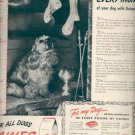 Dec. 1945 Gaines Dog Meal  ad (# 5123)