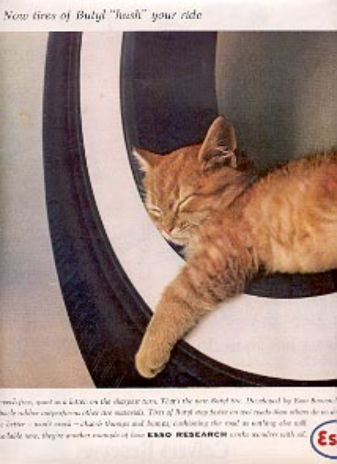 1959 Esso Research- Butyl Tires ad (# 2377)