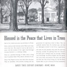 April  1941  Davey Tree Expert Company    ad  (#3666)
