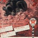 1939 Texaco    ad (  # 250)