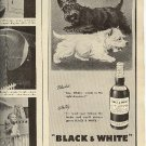 1948 Black & White Scotch ad (# 2008)