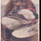 Picture of Dog with bird in mouth-  Postcard- (# 104)