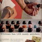 April 9, 1965   Whitman  Sampler    ad  (# 3731 )