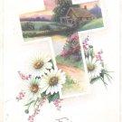 For dear Remembrance Sake   Postcard  (#166)