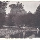 Scene near Forestdale, Mass.   postcard  #7 (#214)