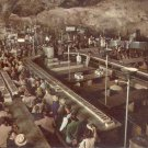 Lunch Room Carlsbad Caverns National Park New Mexico   postcard   (#251)