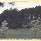 The Eighteenth Green Mid Pines Clue Southern Pines, N.C.  postcard # 2 (#270)