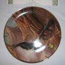 Alaska Chilkat Bald Eagle Preserve-  Soaring Spirit  plate