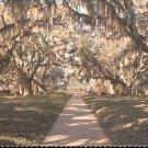 Brookgreen Gardens  South Carolina      Postcard  (# 393)