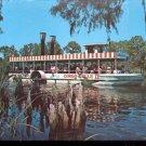 Cypress Knees along Weeki Wachee River - Florida   Postcard   (# 410)