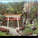 Plants, Trees, and flowers from the Orient at Cypress Gardens  Postcard  (# 417)