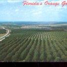 Florida's Orange Groves      Postcard (#435)