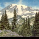 Mt. Rainier , Washington     Postcard (#444)