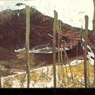 Natural Bridge of Alabama - Natural bridge, Ala.       Postcard (#460)