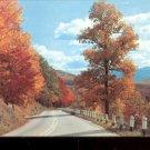 Autumn Colors along winding roads      Postcard (#470)