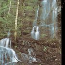 Place of a Thousand Drips  in Great Smoky Mountains National  Postcard  ( # 520)