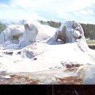Grotto Geyser Yellowstone National Park    Postcard  (# 547)