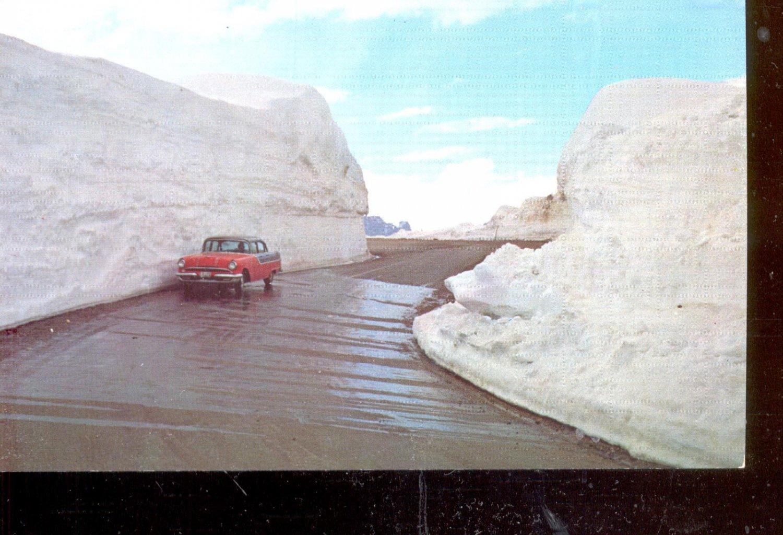 Hugh snow banks on Beartooth Highway in June     Postcard  (# 549)
