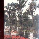 Sightseeing boats at Florida's Cypress Gardens      Postcard  (# 581)