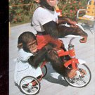 Me and My Shadow - Chimpanzee at Monkey Jungle, Florida  Postcard-#2 (#  597)