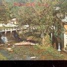 Mammy Yokum's Grist Mill- Dogpatch USA    Postcard- (# 617)