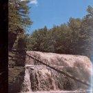 Canyon Falls and Gorge- Sturgeon River- Michigan   Postcard- (# 631)