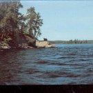 Michigan Black Bear in the Upper Peninsula   Postcard- (# 634)