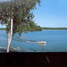 a water skier skimming over the lake    Postcard   (# 691)