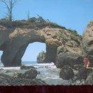 Elephant Roack. Washington Seacoast    Postcard   (# 733)