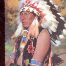 Indian Chief in Full Dress     Postcard   (# 739)