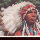 Indian Chief      Postcard   (# 740)