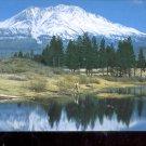Mt. Shasta         Postcard   (# 766)