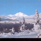 Winter on Mt. Shasta  , California       Postcard   (# 767)